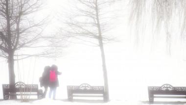 iarna ninsoare viscol bucuresti vreme meteo zapada