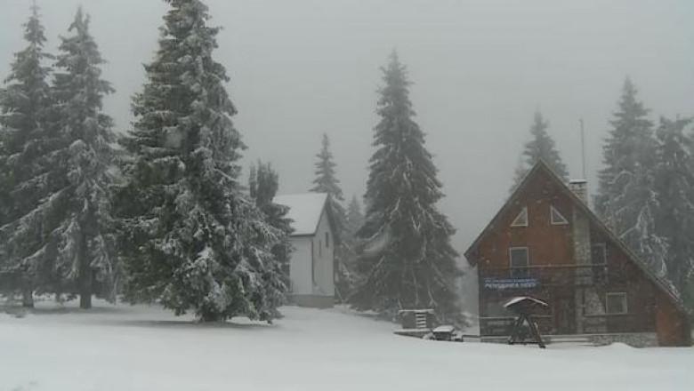 casa vila brazi ninge ninsoare pensiune