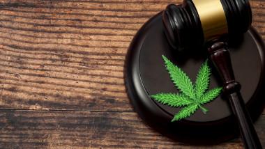 Legislație droguri, legalizare canabis
