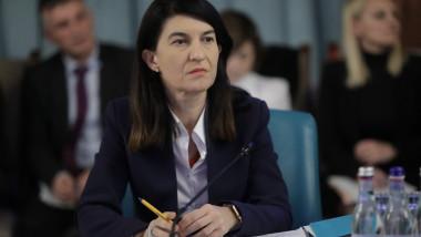 violeta-alexandru-gov.ro