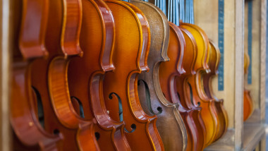 Row of violins on display rack