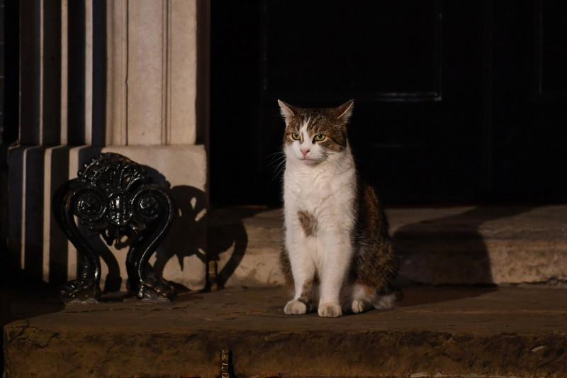 Prime Minister Boris Johnson Appoints His Cabinet