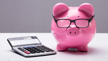 Piggybank With Eyeglasses And Calculator