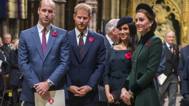 printul harry printul william meghan markle kate middleton familia regala