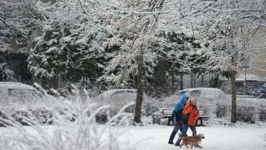 doi oameni plimba cainele pe ninsoare