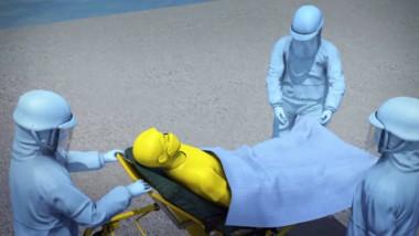 grafica pacienti nava