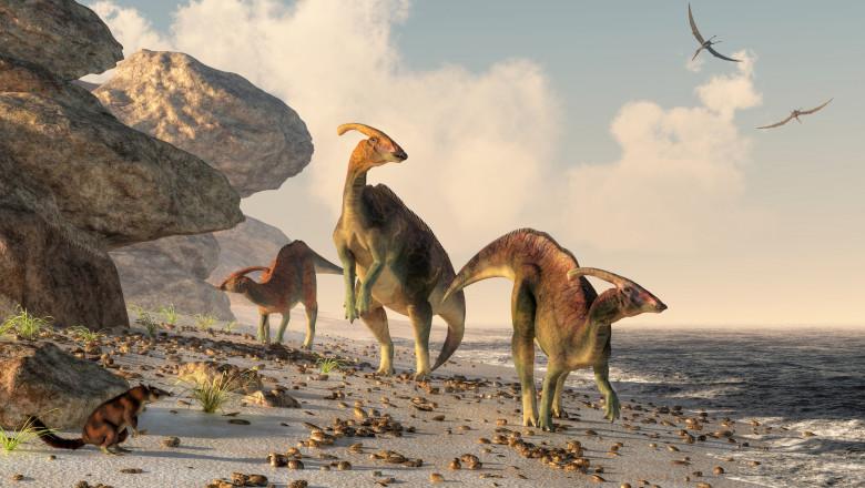 Parasaurolophus on a Beach