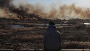 Incendiu Delta Văcărești