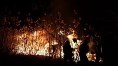 incendiu delta vacaresti - ganea 20200224184636_OGN_4418-01