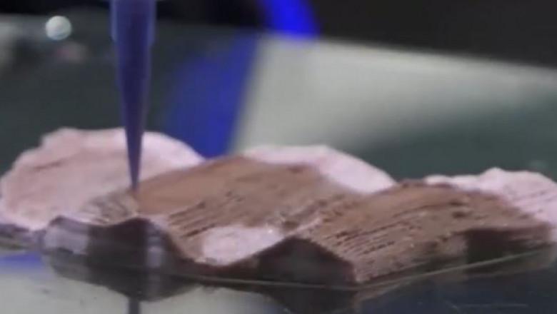 carne 3d artificiala