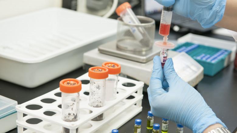 analize de sange in laborator