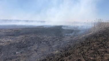 incendiu corbeanca garda de mediu fb