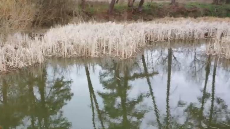 lac termal 1 mai