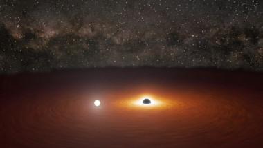 gauri negre captura bbc