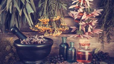 homeopattie