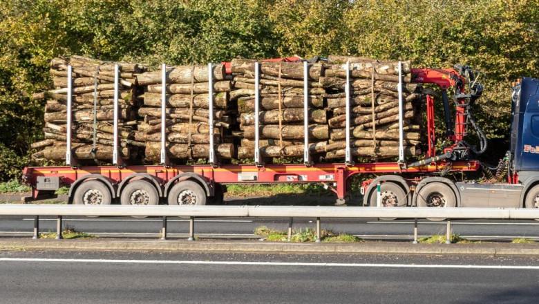 camion transport lemne busteni profimedia