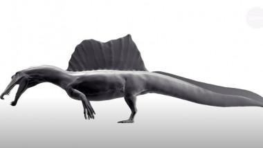 dinozaur-inotator-Spinosaurus-aegyptiacus