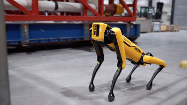 profimedia caine robot boston dynamics
