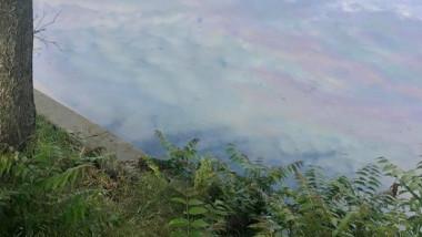 poluare-lac-baneasa-fb