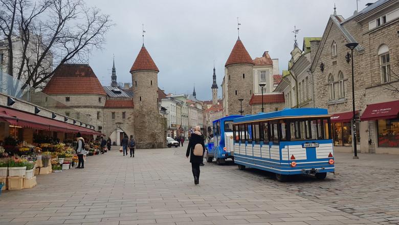 Fete Tallinn - Companions slave