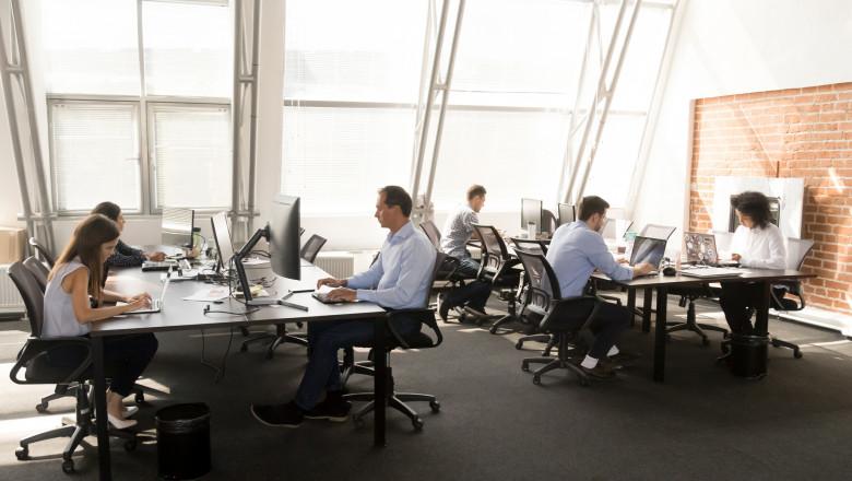 anagajati munca birou companie firma