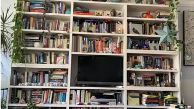 pisică ascunsă în bibliotecă