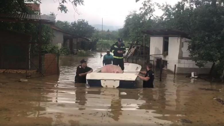 inundatii timis caras severin