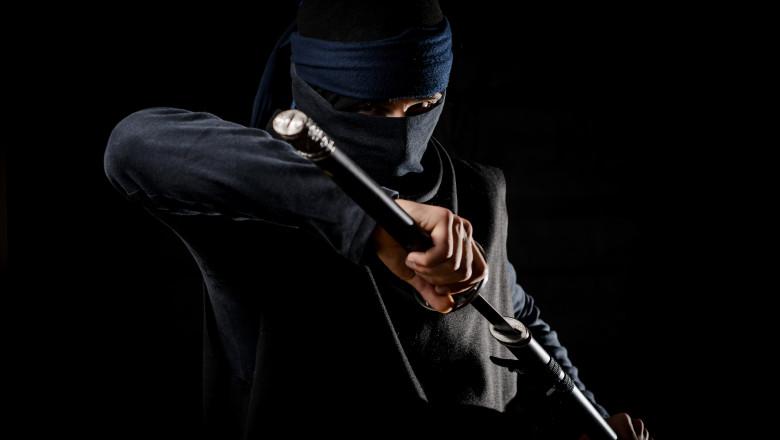 The fighting ninja