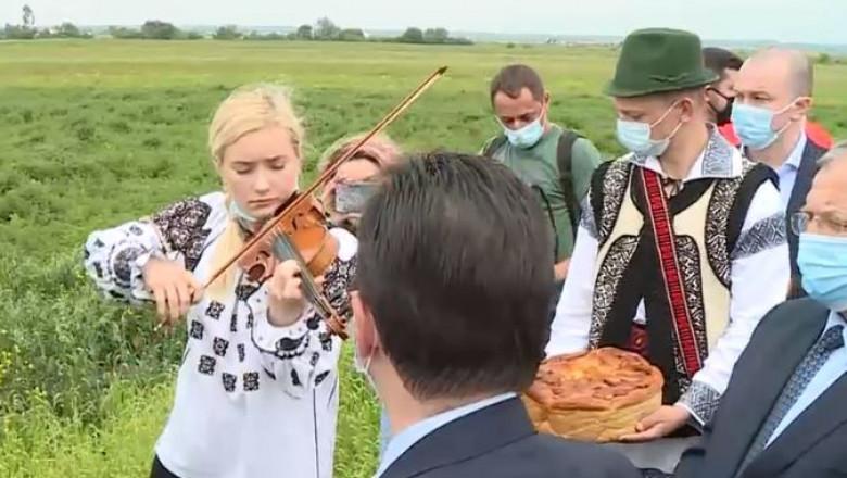 orban vioara radauti