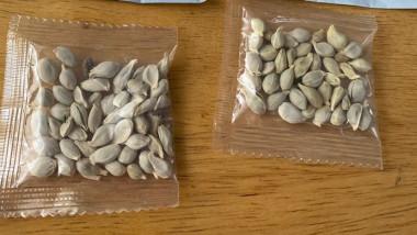 Americanii sunt avertizați să nu deschidă pachetele cu semințe care par a fi trimise din China