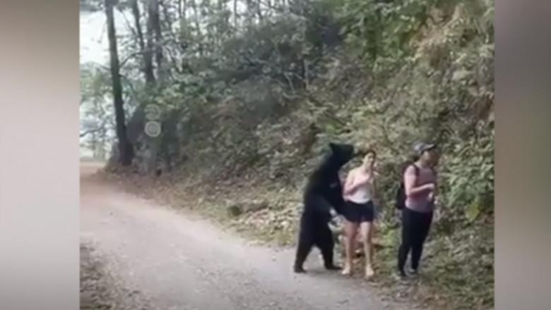 urs-mexic-parc-national-bbc