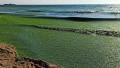 alge litoral crop fb