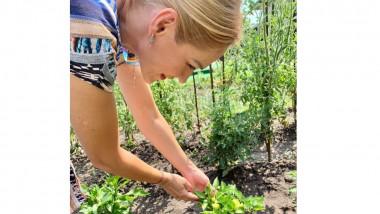 firea in gradina crop