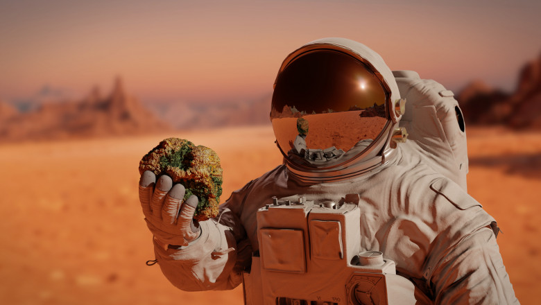 astronaut pe marte