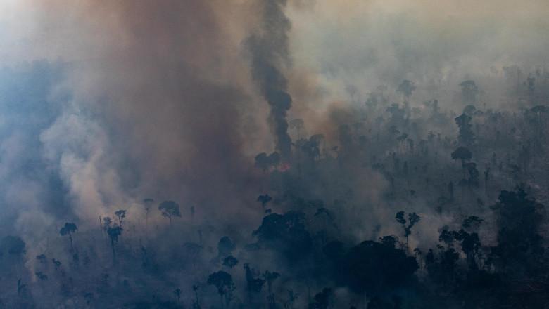 Incendii în pădurea amazoniană