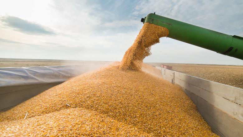 grau grane combina cereale