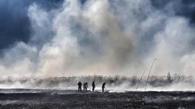 Un nou incendiu de proporții în Periș, unde ard zece hectare la batalurile unei foste ferme de porci. Oamenii, avertizați prin RO-ALERT