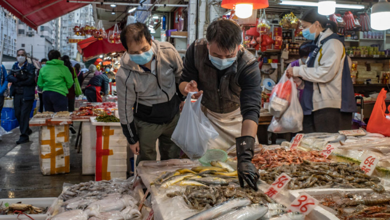 fructe de mare in piata din wuhan china