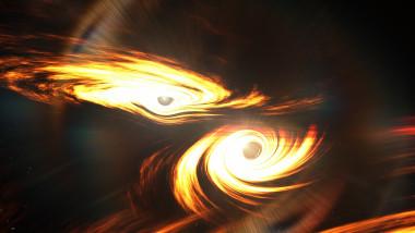 gauri negre ligo