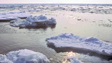 Întinderile de gheaţă din Marea Bering au ajuns la cel mai redus nivel din ultimii 5.500 de ani
