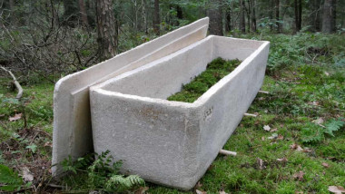 """După luni de teste, în Olanda a avut loc prima înmormântare la care s-a folosit un """"sicriu viu"""", realizat din compost făcut din miceliu, rețeaua de fibre subțiri aflată sub pălăria ciupercilor."""