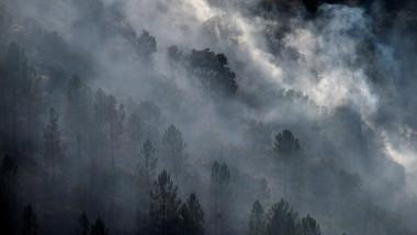 Fumul și particulele de cenușă de la incendiile de vegetație din SUA au traversat Atlanticul și au ajuns până în Olanda