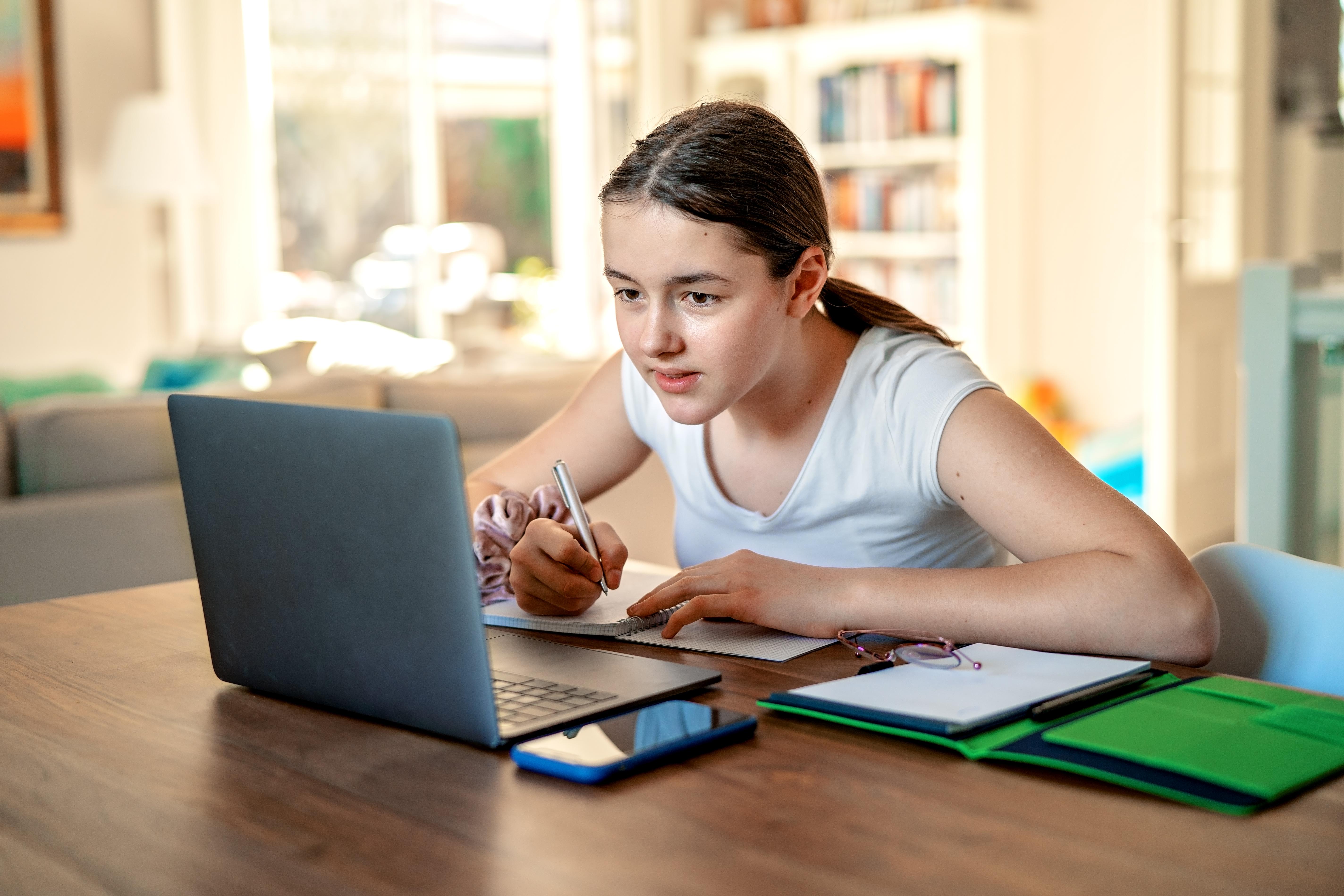 Ministrul Educatiei: Dupa ce se va incheia pandemia vom continua cu predarea online unde e potrivit. Se va include in contractul scolar