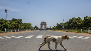 India Imposes Nationwide Lockdown As The Coronavirus Continue To Spread