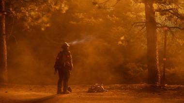 Incendii de pădure masive în statul american California