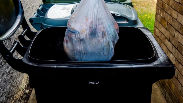 mancare aruncata la gunoi alimente