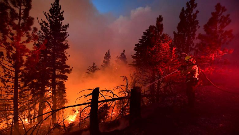 pompierii lucrează la stingerea unui incendiu în pădure