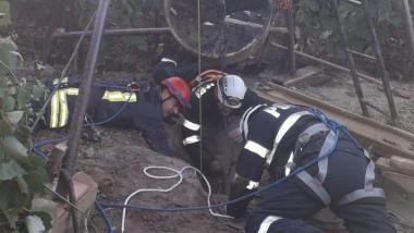 Misiune de salvare a pompierilor vasluieni