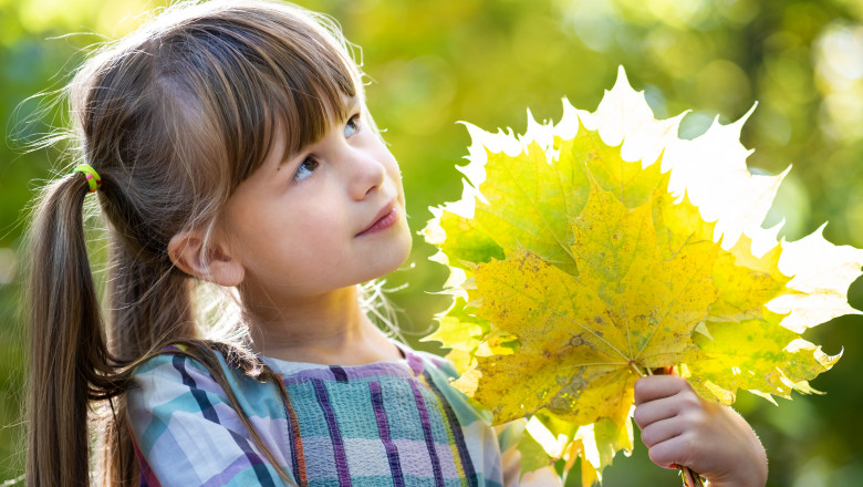 fetita care tine in maini frunze de copaci toamna vreme placuta