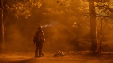 Incendiile din California au distrus o suprafaţă record de 1,6 milioane de hectare